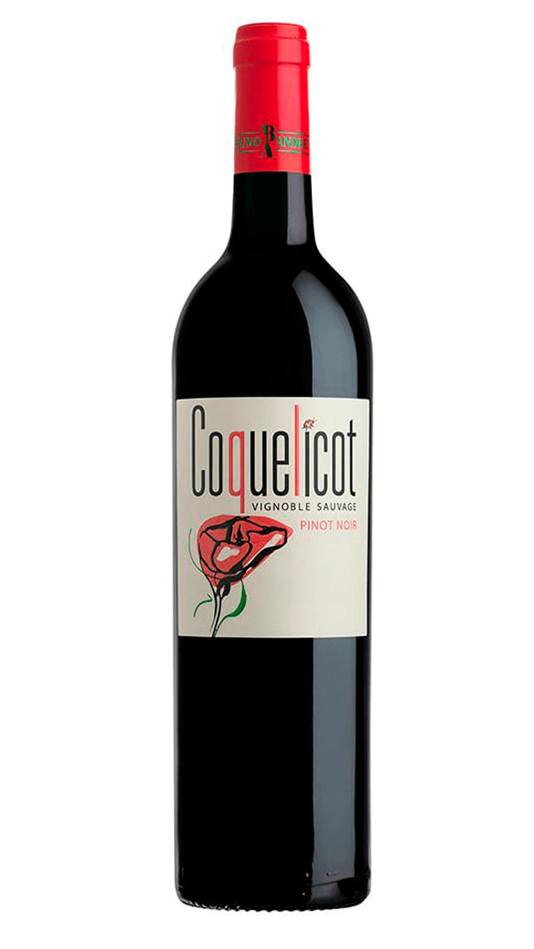 Bruno-Andreu-Coquelicot-Pinot-Noir-2019